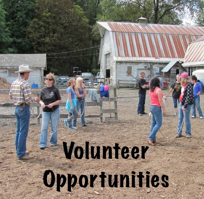 skills/experience seeking development Determining training and development needs seeking assistance as needed and ensuring equipment is fully operational prior to using it again.