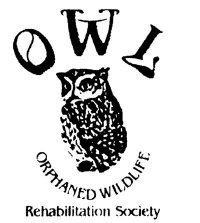 OWL Rehabilitation Facility